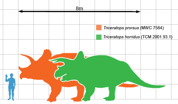 Triceratops_scale